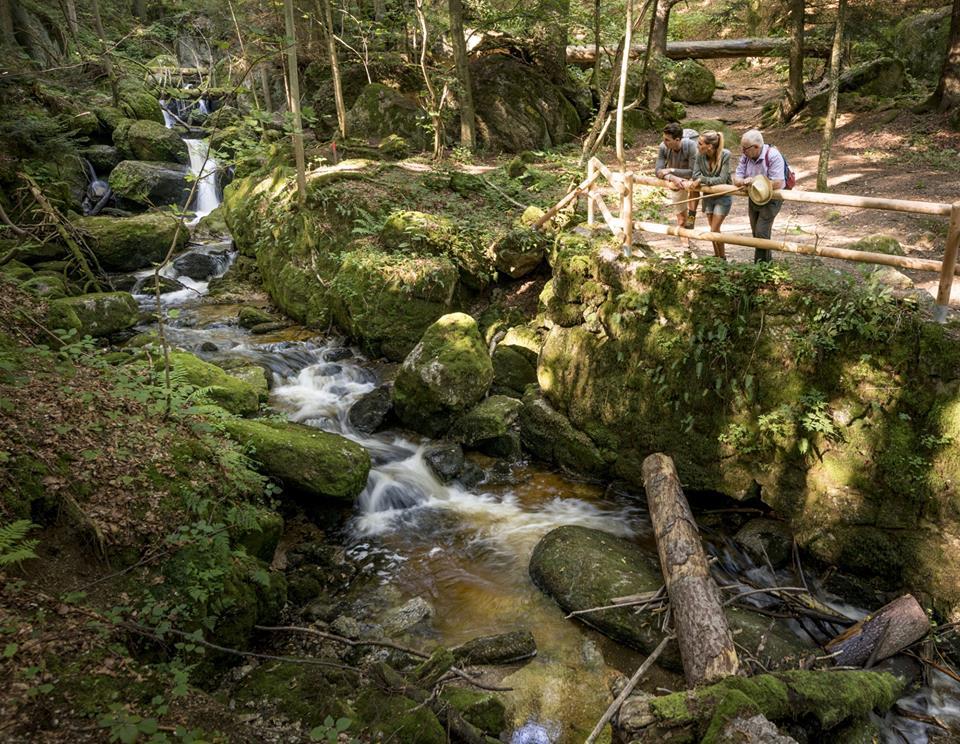 Fotoquelle: Waldviertel Tourismus, ishootpeople.at